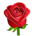 Эмодзи 🌹 Роза в месседжере WhatsApp