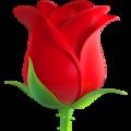 Эмодзи 🌹 Роза на Apple iOS